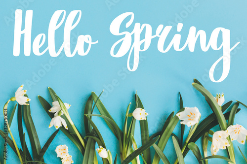 Obraz Hello Spring text with first spring flowers on blue background, flat lay. Stylish floral greeting card or poster template. Springtime. Floral  border of Spring snowflake - fototapety do salonu