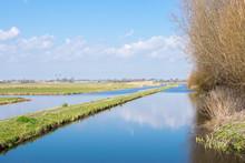 Classic Dutch Landscape With W...