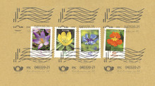 Briefmarken Stamps Blumen Flowers Frankiert Gestempelt Used Braun Germany Deutschland Kapuzinerkresse Kornblume Winterling Krokus Post