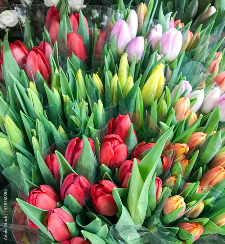 Fototapety, obrazy: Colorful tulips for sale at market.
