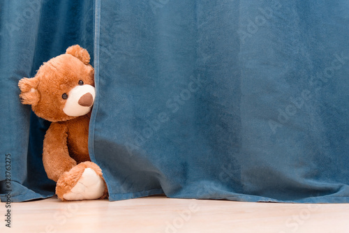 Obraz Kids toy brown funny Teddy bear peeks out from behind the blue curtain - fototapety do salonu