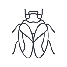 Housefly Icon, Line Detail Style