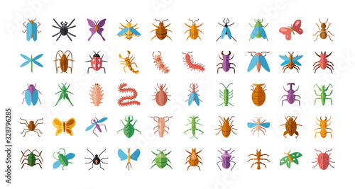 Photo bugs and insect icon set, flat style