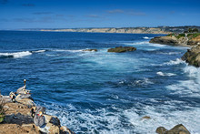 Looking North From Children's Pool Beach, La Jolla, Past Seal Rock To Torrey Pines And Del Mar