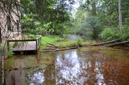 Obraz na plátne stagnant river water with wood deck and trees