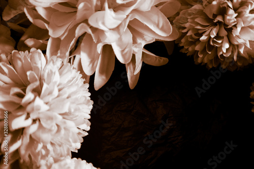 Beautiful abstract color black and yellow flowers on black background and gold flower frame and brown leaves texture, dark background, orange and gold love banner