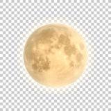Fototapeta Kosmos - Full moon isolated with background, vector