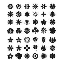 Flowers Silhouette Icon Set Na...