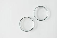 Two Glass Petri Dish With Tran...