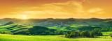 Fototapeta Fototapety z naturą - Idyllic view, green Tuscan hills in light of the setting sun