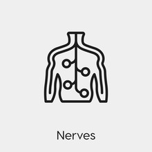 Nerve Icon Vector. Linear Styl...