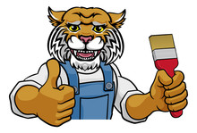 A Wildcat Painter Decorator Ca...