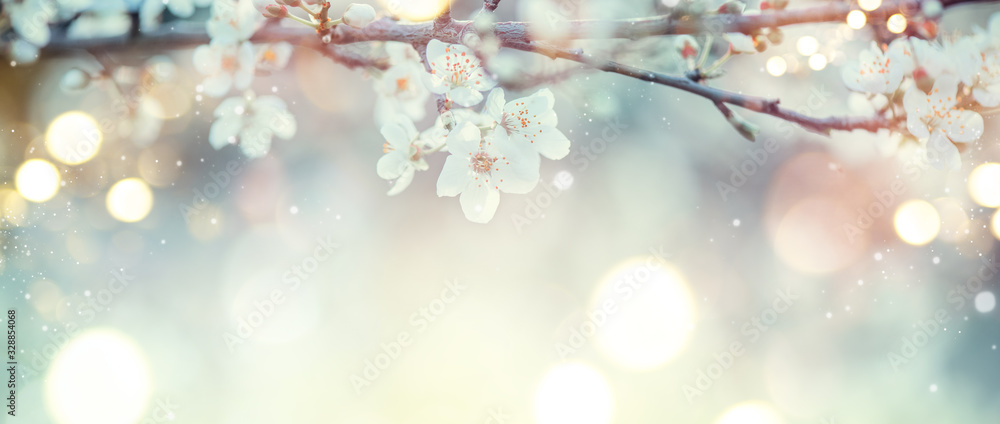 Fototapeta Spring Nature Easter art background with blossom. Beautiful nature scene with blooming flowers tree and sun flare. Sunny day. Spring flowers. Beautiful Orchard. Abstract blurred background. Springtime