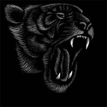 Tiger Ghjklb 2