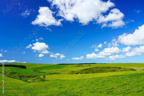 Photo 牧場の風景