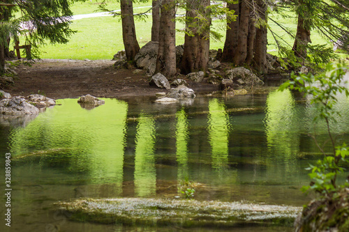 Photo Beautiful water reflection of several countryside trees