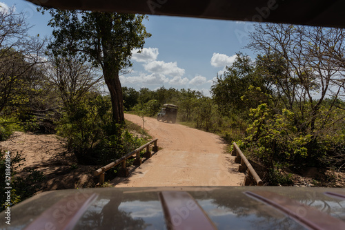 personal perspective view from a safari vehicle in the jungle of sri lanka