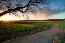 Evening Sunshine Over Bike Path