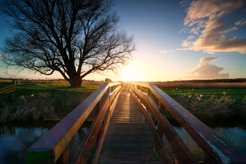 sunshine behind wooden bridge over river