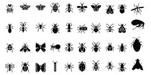 Cockroach Insect Icons Set On ...
