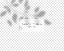 Shadow Overlay Effect. Natural...