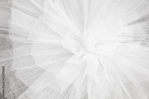 Fotografie, Obraz Closeup detail of the ballerina white tutu dress