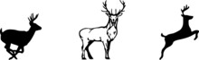 Deer Icon Isolated On Background