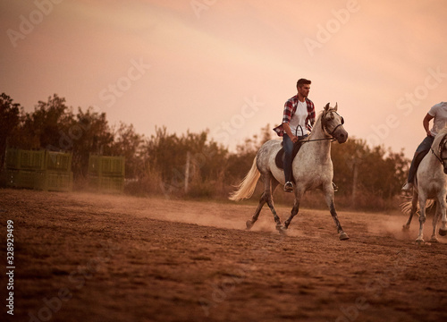 Cuadros en Lienzo Man on galloping horse at sunset.