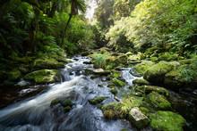 Beautiful Waterfall In New Zea...