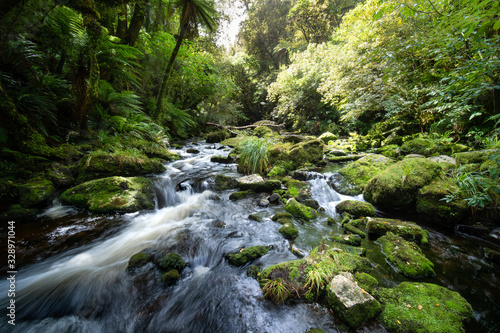 Beautiful waterfall in New Zealand - 328971044