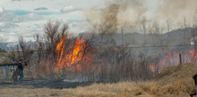 Woman Fights Brush Fire On Her Ranch Property