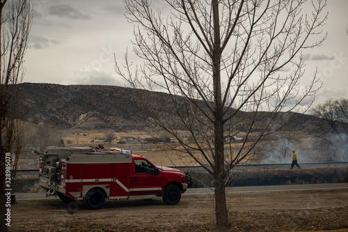 Wildland Firefighter Assess a Brush Fire Fotobehang