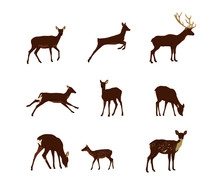 Set Of Animal Silhouettes Of D...