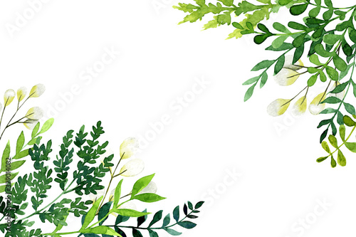 Corner botanical background, greenery with leaves and branches Canvas
