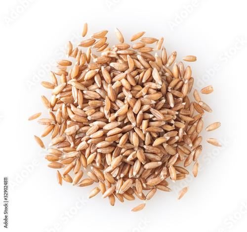 Heap of uncooked spelt grains isolated on white background Fototapeta
