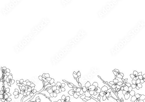 Fototapeta おしゃれな桜フレーム04/イラスト素材/背景素材 obraz