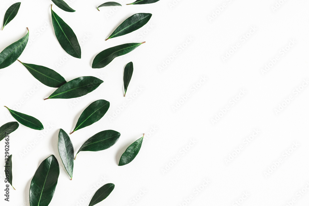 Fototapeta Green tropical leaves on white background. Summer concept. Flat lay, top view
