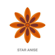 Star Anise Flat Icon On White ...