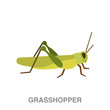grasshopper flat icon on white transparent background. You can be used black ant icon for several purposes.