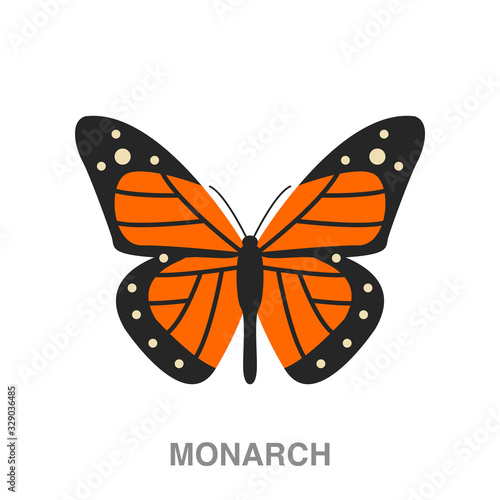 monarch butterfly flat icon on white transparent background Fototapeta