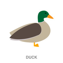 Duck Flat Icon On White Transp...