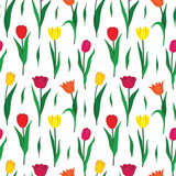 Fototapeta Tulipany - Seamless pattern background with colorful tulip flowers. Vector illustration