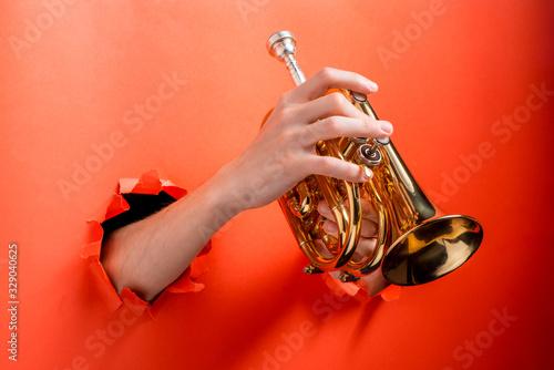 Obraz na płótnie Hands playing pocket trumpet torn red paper background