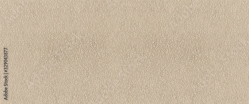 embossed paper texture. Banner background Canvas Print
