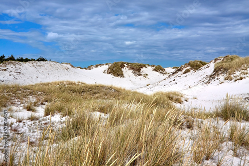 Sand dune in Dueodde, Bornholm island, Denmark, Billede på lærred