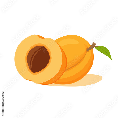 Fotografija Fruit half apricot with a stone