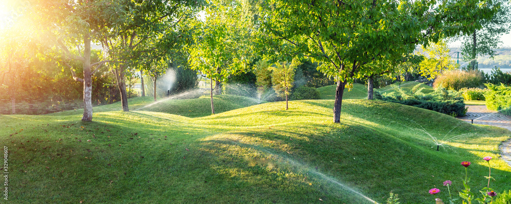 Fototapeta Landscape automatic garden watering system with different sprinklers installed under turf. Landscape design with lawn hills and fruit garden irrigated with smart autonomous sprayers at sunset time