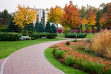 Colorful Autumn Park Landscape...