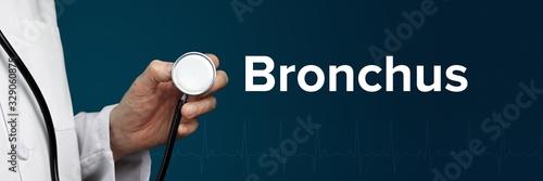 Fényképezés Bronchus