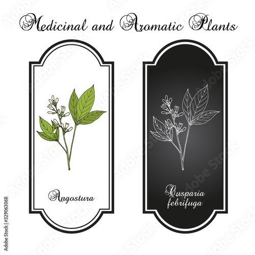 Angostura trifoliata, medicinal plant Wallpaper Mural